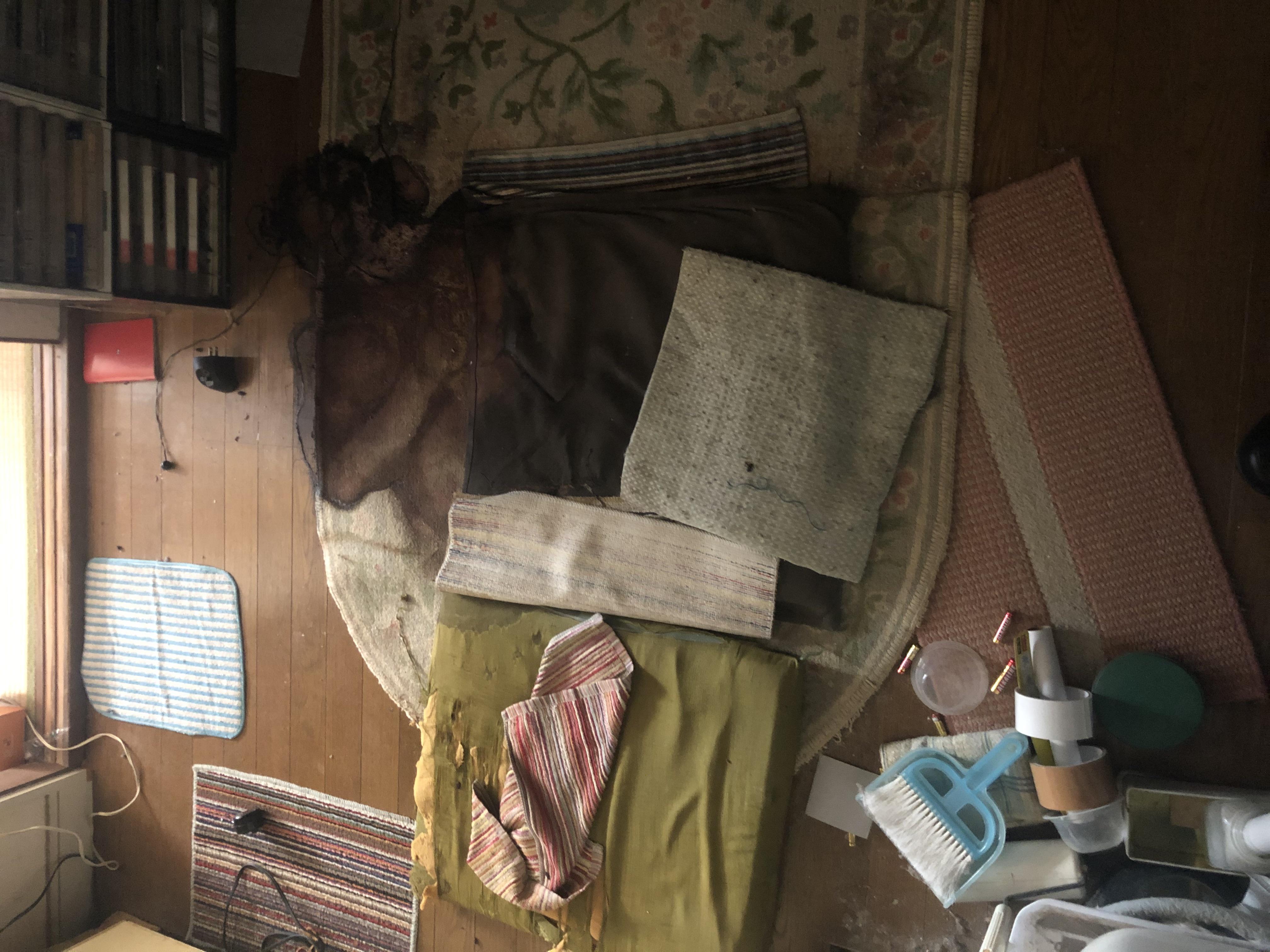 東京都【特殊清掃】