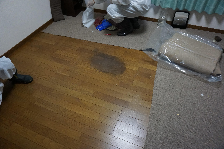 茨城県取手市 特殊清掃作業