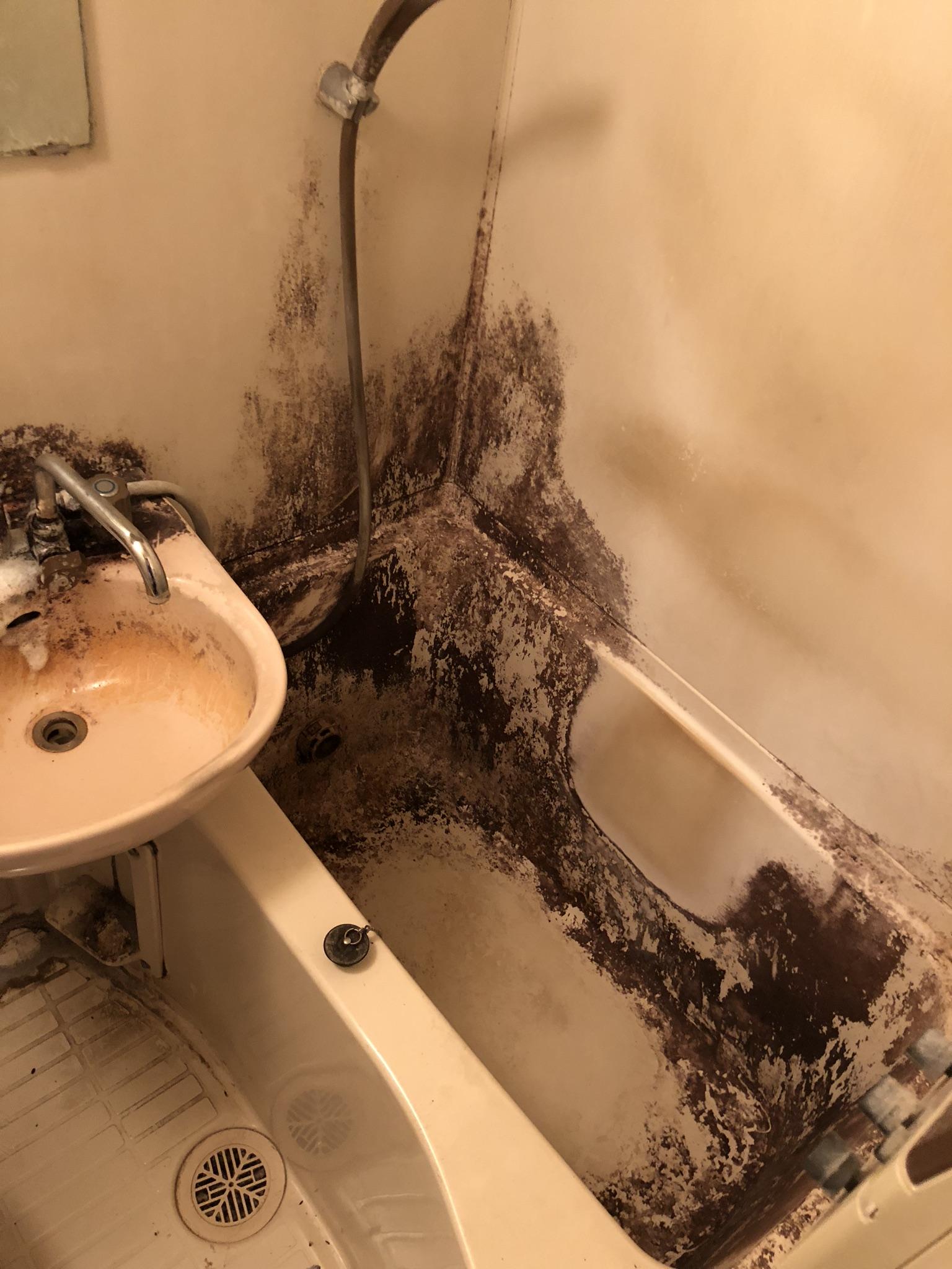 お風呂の汚れもすっきりキレイに