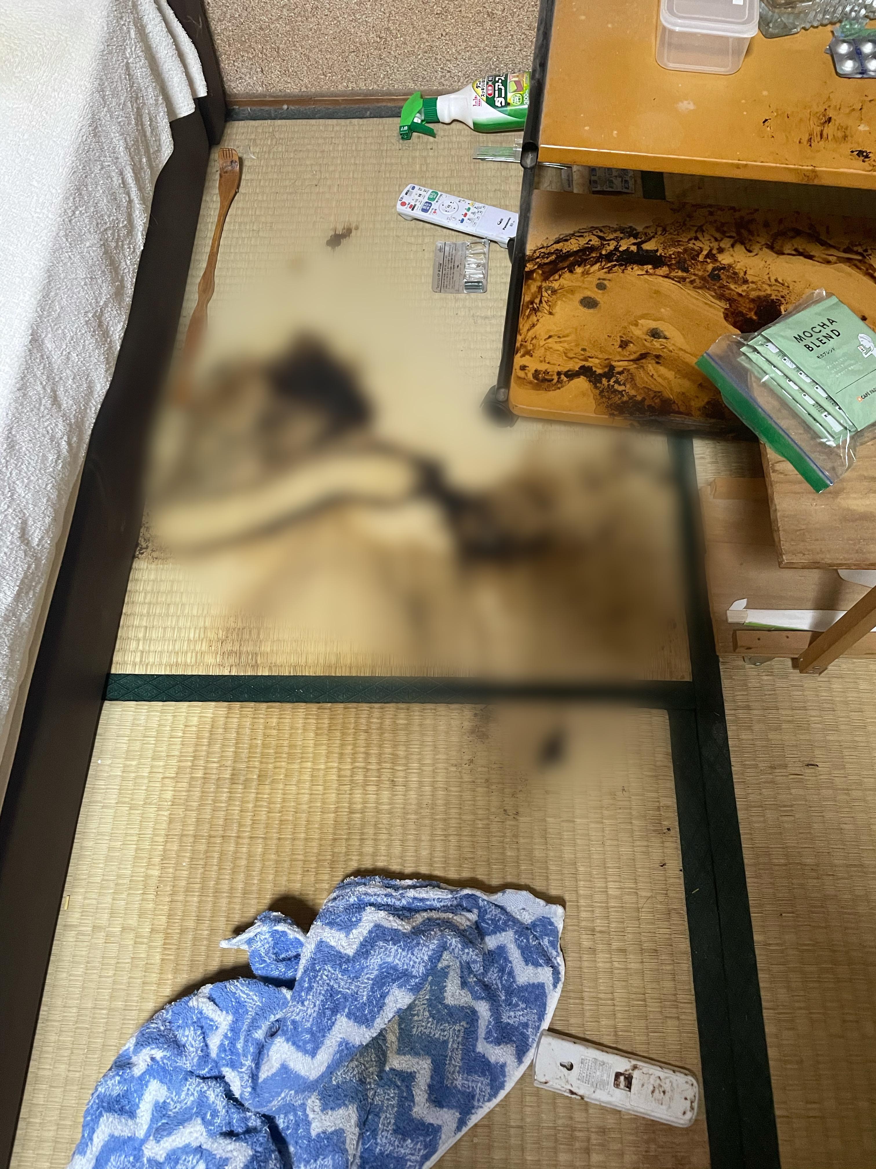 和歌山県【特殊清掃】
